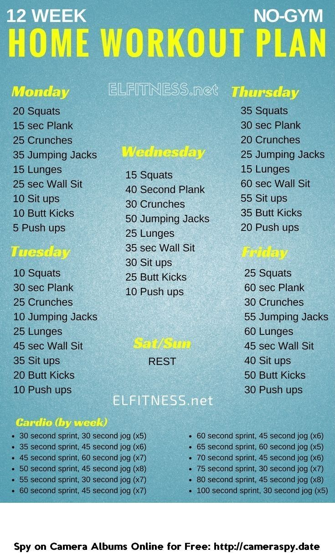 Home Bodybuilding Workout Schedule