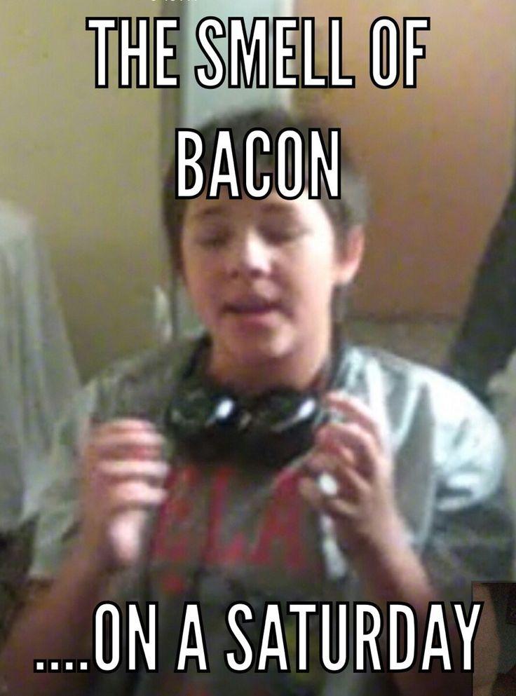 3d79e3475dc548ff0f82231331f1a19a best memes ever funny stuff 31 best best memes ever images on pinterest best memes, best