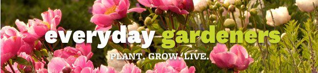 Everyday Gardeners