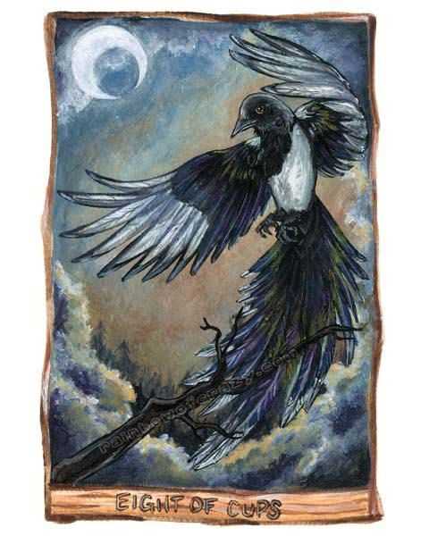 Magpie Print Black Bird Wall Art Eight Of Cups Tarot