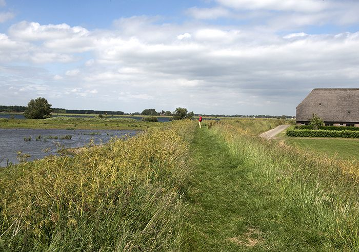 In the wildernis of Tiengemeten where a civilised island is given back to nature.
