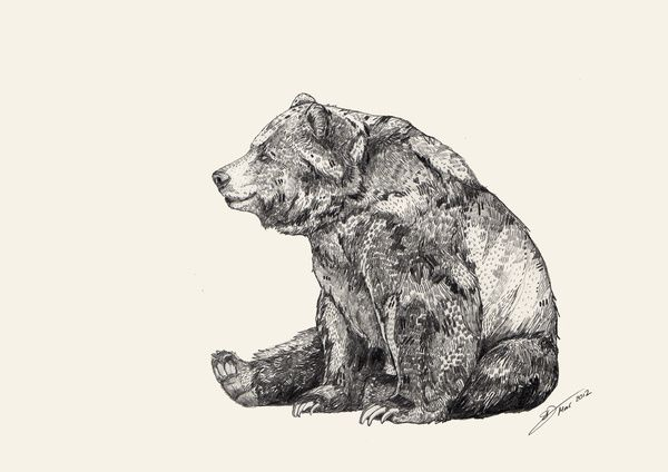 maybe something like this, but with two bears. One looking at the other