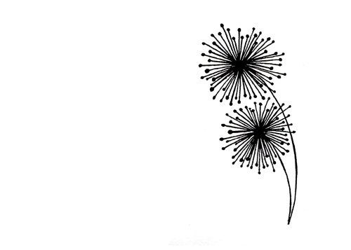 Simple dandelion line drawing black and white abstract art print the dandelions
