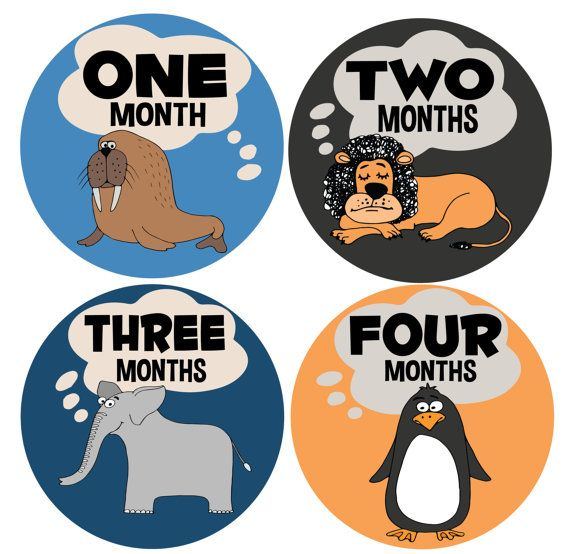 baby boy month stickers- Newborn baby boy month stickers for your little one!! So cute and perfect to track growth!