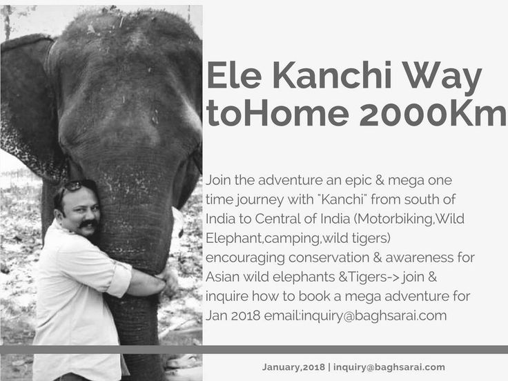 An adventure with Kanchi & Neeraj way back to home at Bagh Sarai Resort for more inquiry@baghsarai.com