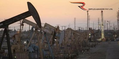 Ripples Commodity Blog: Oil Rises On U.S. Crude Stock Draw, But Prices Rem...