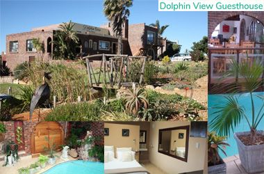 Dolphin View Guesthouse