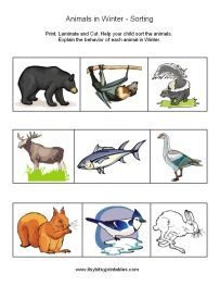 50 best images about animals in winter on pinterest activities for kindergarten sun hats and. Black Bedroom Furniture Sets. Home Design Ideas