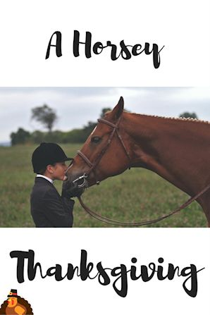 As horse lovers, we have a lot to be thankful for!