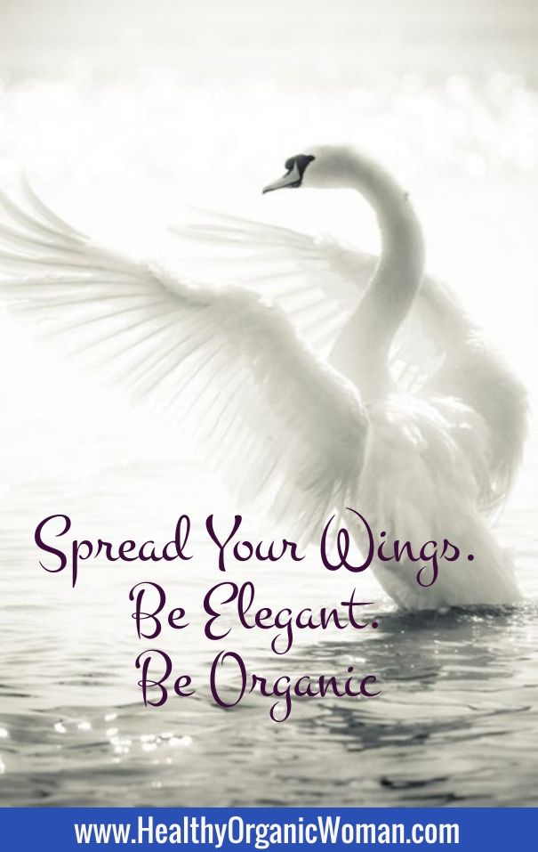 Spread your wings. Be elegant. Be organic www.HealthyOrganicWoman.com/go