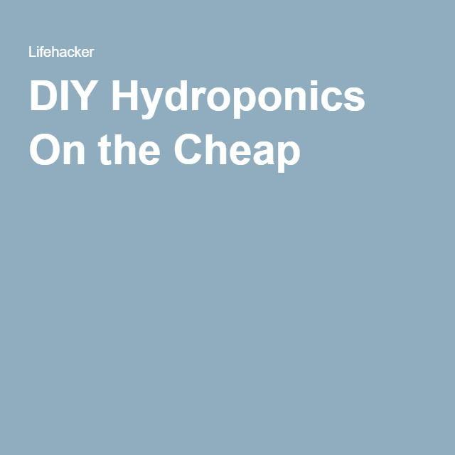 DIY Hydroponics On the Cheap
