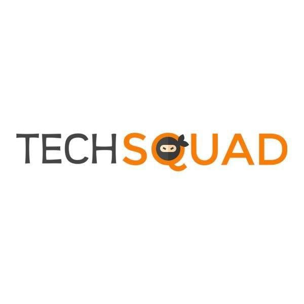Techsquad is known as the best IT services company in all