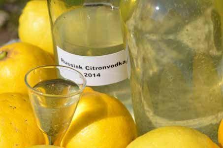 Russisk citronvodka