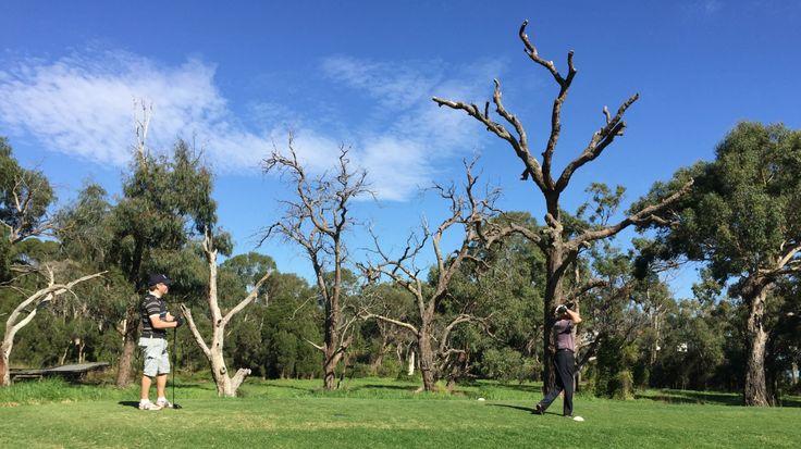 Morack Golf, tee off at hole 7