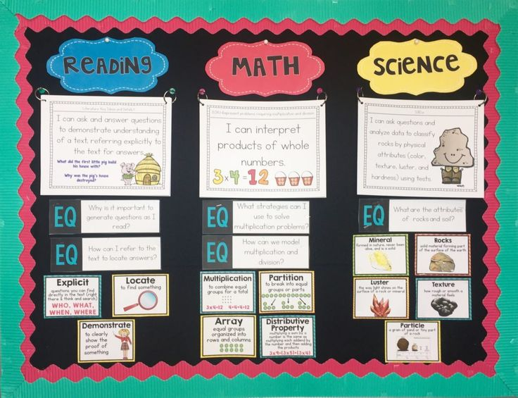 Classroom Focus Wall-This focus wall includes standards, essential questions, and illustrated unit vocabulary cards.