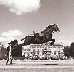 queluz national palace portuguese school of equestrian art