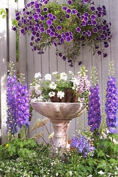 17 Best Images About Gardening Ideas On Pinterest Gardens Paths And Garden Ideas