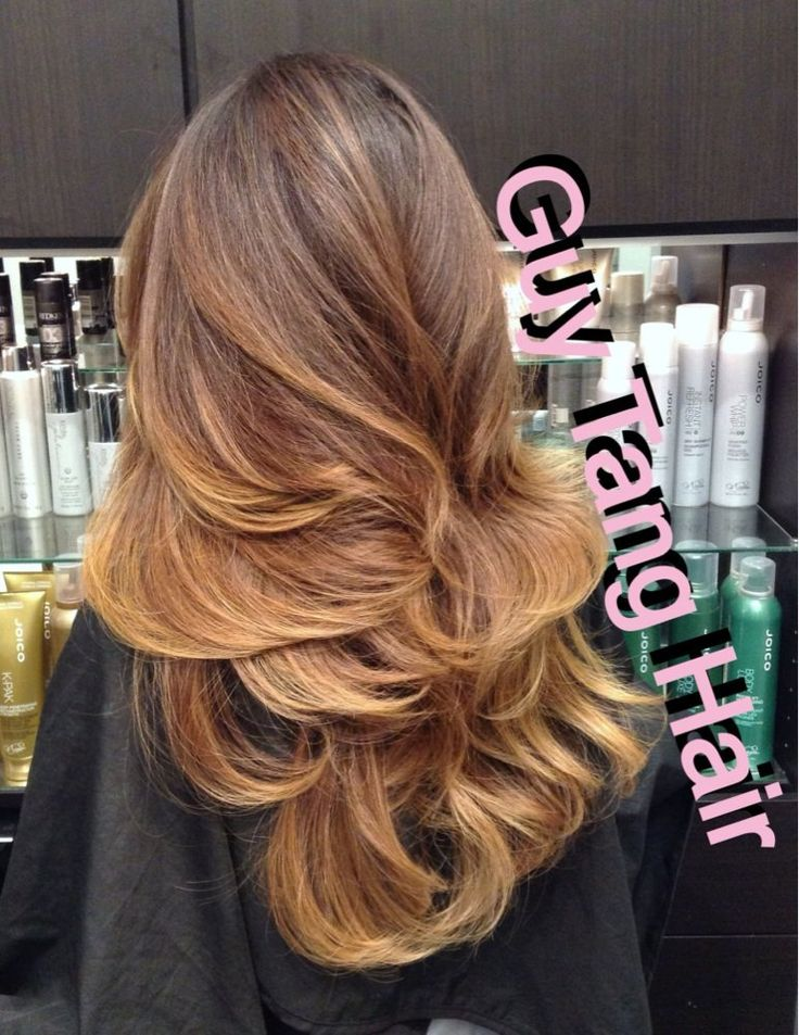 Ombre Hair Brown To Caramel To Blonde Google Search