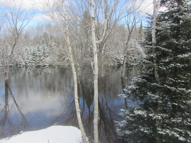High water at cottage on Head River March 2016