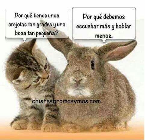 #escuchar