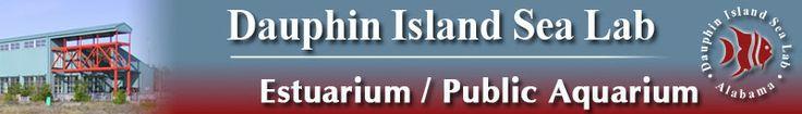 DISL Press site