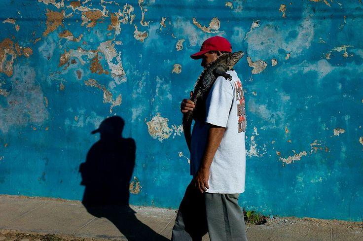 Nikos Economopoulos. Cuba 2014