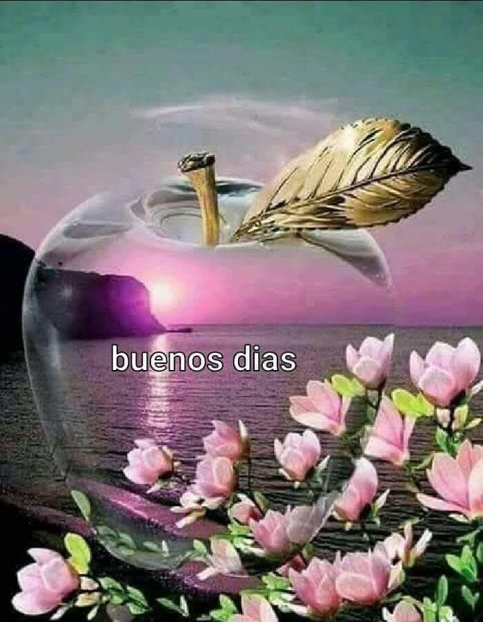 Pin De Mariangeles M A En Buenos Dias Buenos Dias Memes Chistosos Saludos D Buenos Dias Buenos Dias Saludos