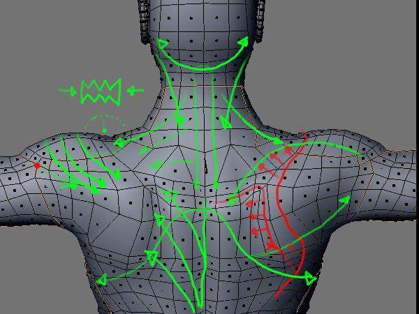 blender human topology - Google Search