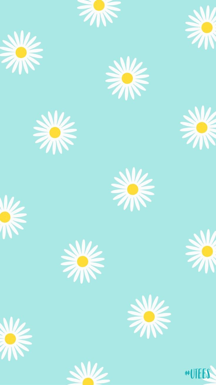 Sunflower Wallpaper Background For Spring Time Iphone Wallpaper I