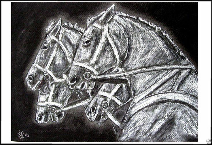 Pferde Portrait Schwarz Weiß Zeichnung Kunstdruck Print S.Art tierisch Kunst