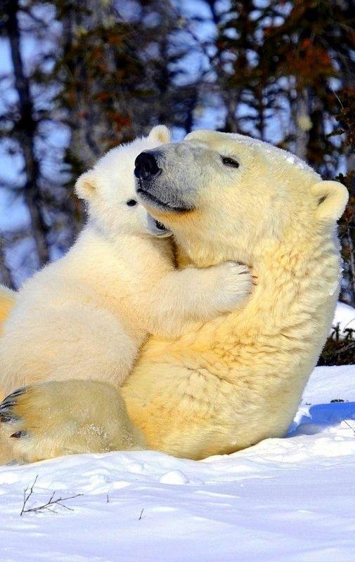 # animals #....sweeeet