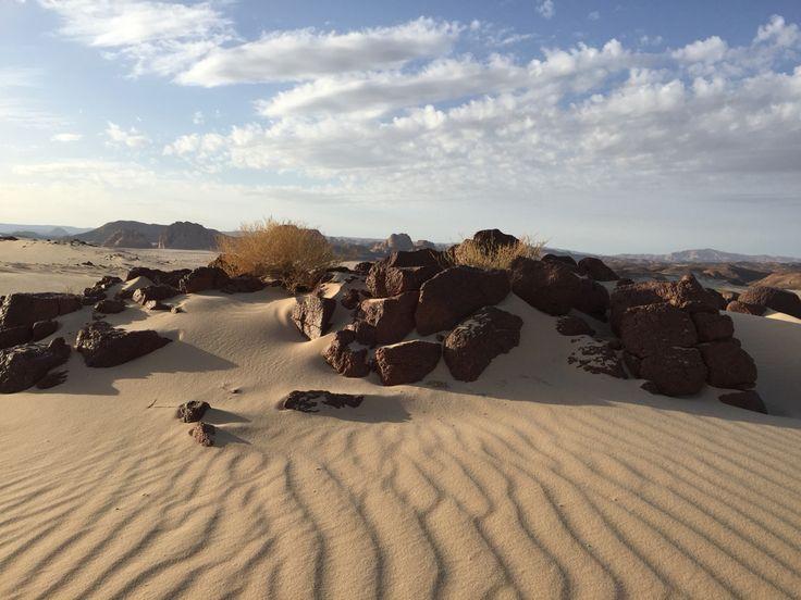 Sand dunes Sinai Peninsula