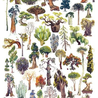 fifty trees