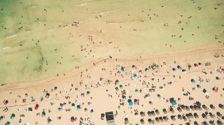 Dromerige dronefoto's van het luizenleven op het strand - Creators