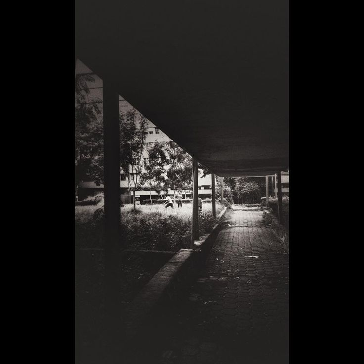 CCU Tlatelolco — Parque #Tlatelolco  (en CCU Tlatelolco)