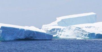 Make an Iceberg Cocktail