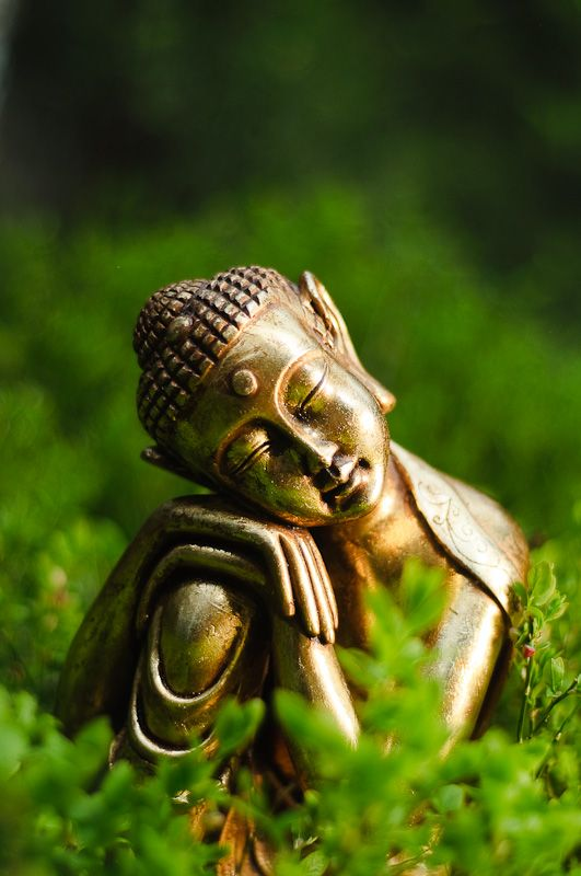 """Enlightenment is, in the end, nothing more than the natural state of being. "" -- Adyashanti, from True Meditation."