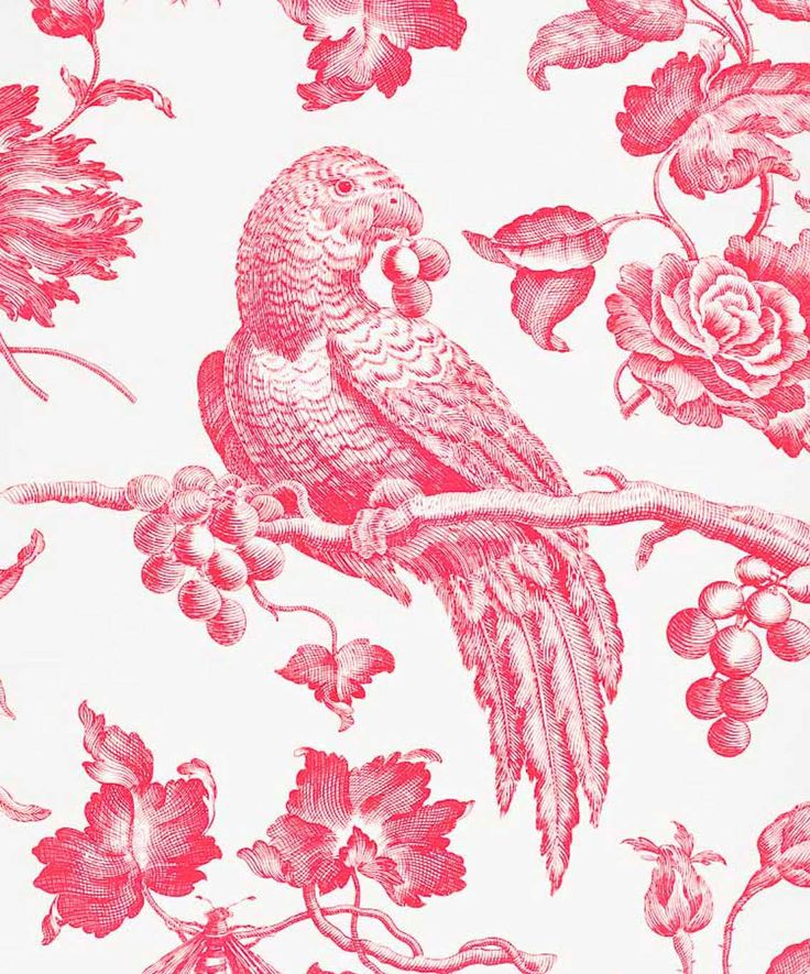21 Best Toile Wall Paper Images On Pinterest: 20 Best Images About Bennison Birds On Pinterest