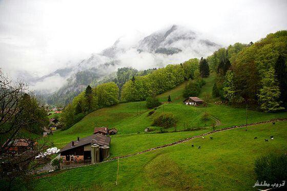 سويسرا .. انترلاكن تعد وجه سياحيه لما تتميز به من مناظر طبيعية جذابة ..