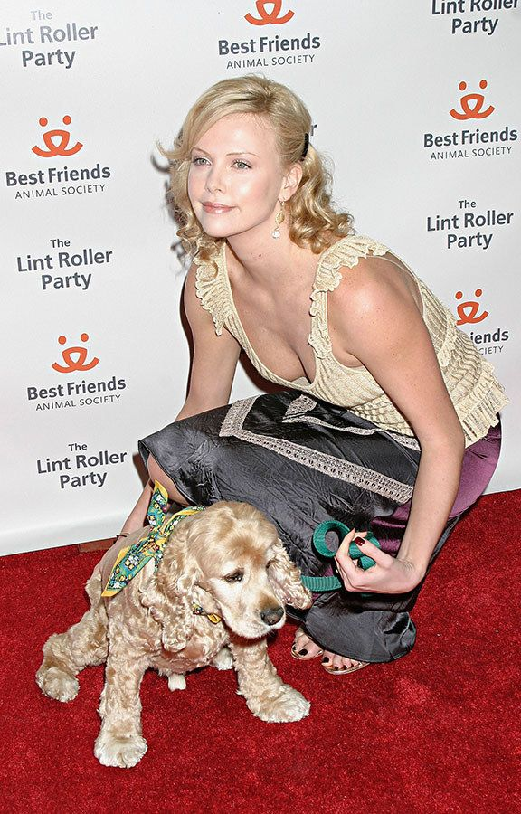 http://atvnetworks.com/ Denver (Adopted by Charlize Theron) | 13 Celebs And Their Adorable Adopted Pups
