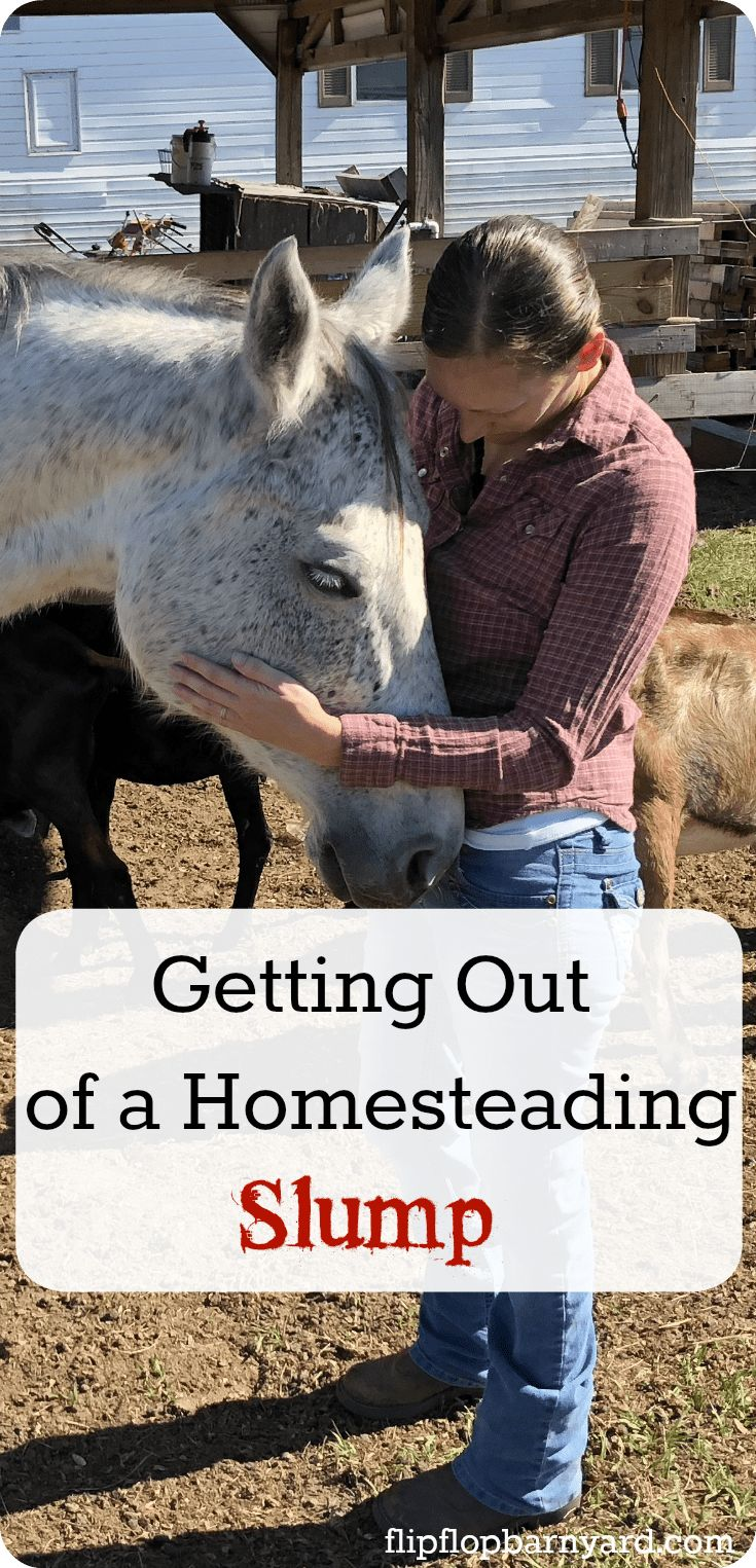 Getting yourself out of a homesteading slump. How to ditch those homesteading blues.
