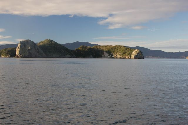 Elephant Cove, Motokawao Islands off of Coromandel. Watch out for the menacing evil rats with eyes that glow in the dark and try not to choke on a snapper bone while anchored there :-)