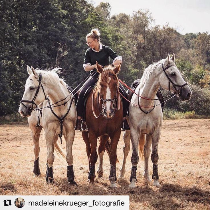 Throwback to HammerJagd Rügen 2017 #tb#throwback#thursday#tbt#horse#instahorse#equestrian#help#missyou#hunt#slipjacht#rügen#hammerjagd#gamilygoals#jagd#schleppjagd#crosscountry#germany#riding#hunter#break#picoftheday#goodday#control#onfleek @ellenantje @karen_verena @tiny_klein http://misstagram.com/ipost/1613807241692010415/?code=BZlZSLRAVev