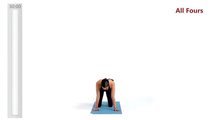 Obtenha instruções de vídeo passo a passo fáceis de especialistas para Braços fortes, pernas fortes para melhorar Força, Potência, Resistência muscular, Flexibilidade, Mobilidade, Equilíbrio, Respiração. Obtenha uma discriminação detalhada do treino e encontre exercícios relacionados