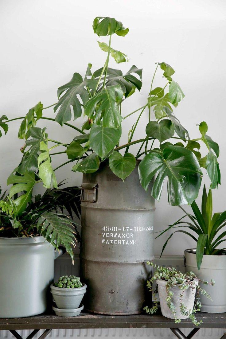 industrieel interieur vintage botanisch grijs groen beton Scandinavisch industrial interior inspiratie inspiration