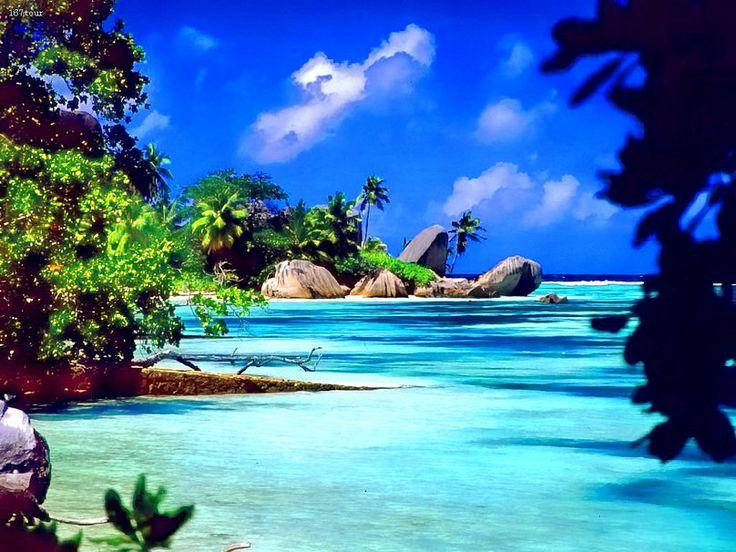 Kerala, India - tropical beach paradise and palm trees