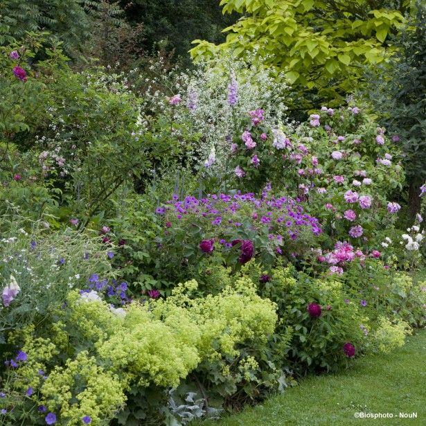 Massif romantique pour 3 m² (fleurs violet, blanc rose et bleu)