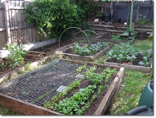 The 25+ Best Cheap Raised Garden Beds Ideas On Pinterest | Cheap Garden  Ideas, Diy Raised Garden Beds And Easy Garden
