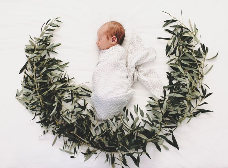 baby sleeping in olive branches