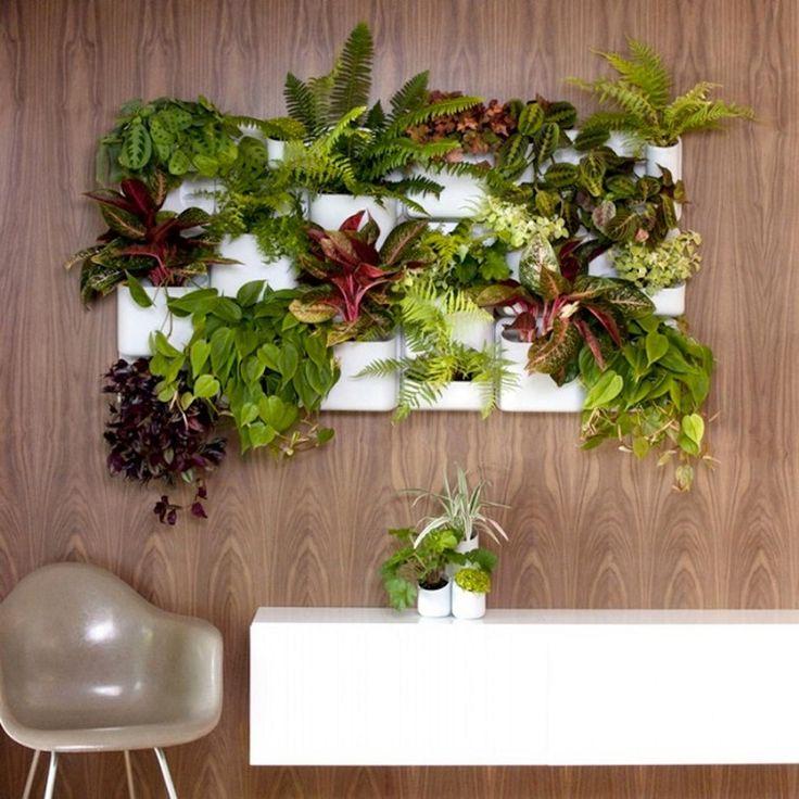 decorazioni-per-pareti-vasi-appesi | Decorazioni vegetali ...